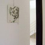 Ardillas -  Pintura Japonesa Sumi-e